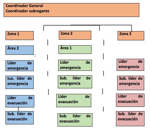 estructura-responsabilidades